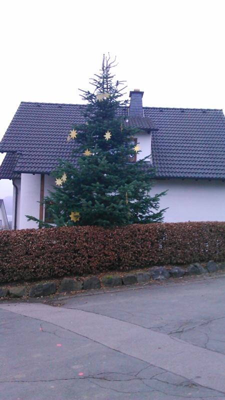 Weihnachtsbaum 018