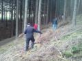 Holz holen11